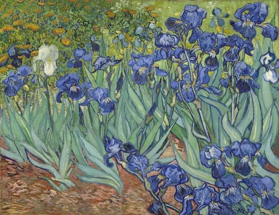 Vincent van Gogh , Irises. Dutch, 1889