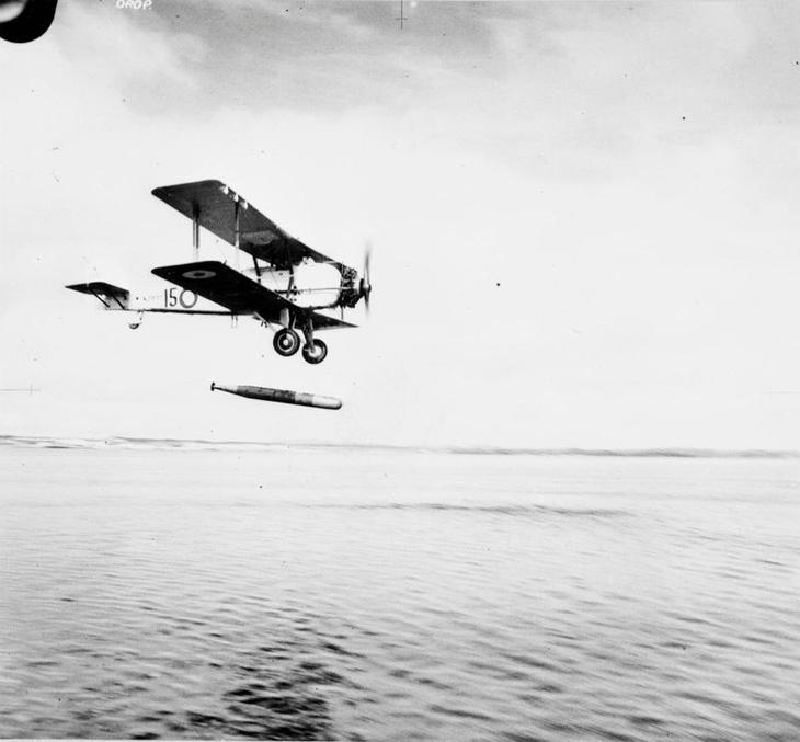 Vildebeeste_torpedo_practice.jpg