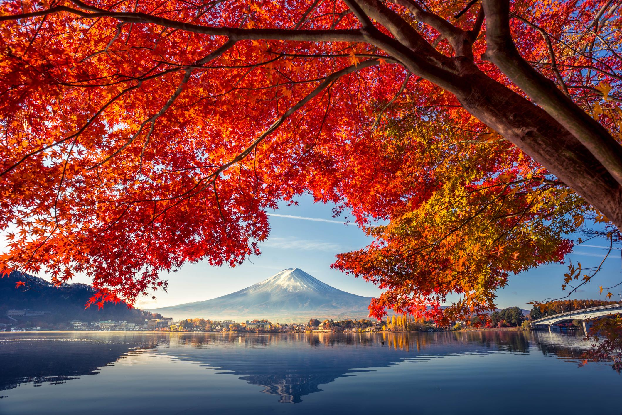 Lake Kawaguchiko with Mt. Fuji in Fall, Japan