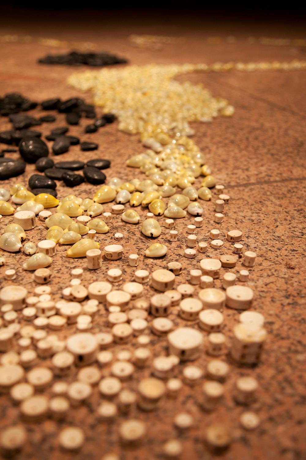 A river of shells, stones and wood trails across the floor.