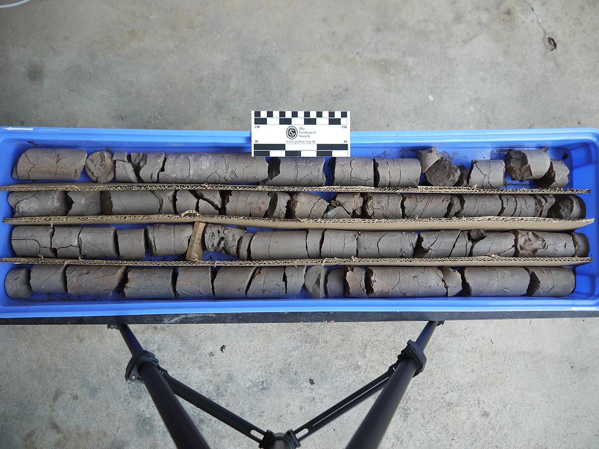 Core Samples