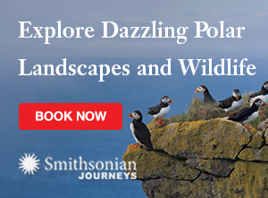 Explore Dazzling Polar Landscapes and Wildlife