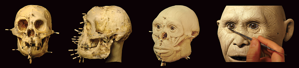 Homo floresiensis process