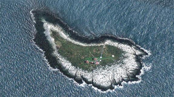 Machias Seal Island lies between the coast of Maine and Grand Manan Island, New Brunswick.