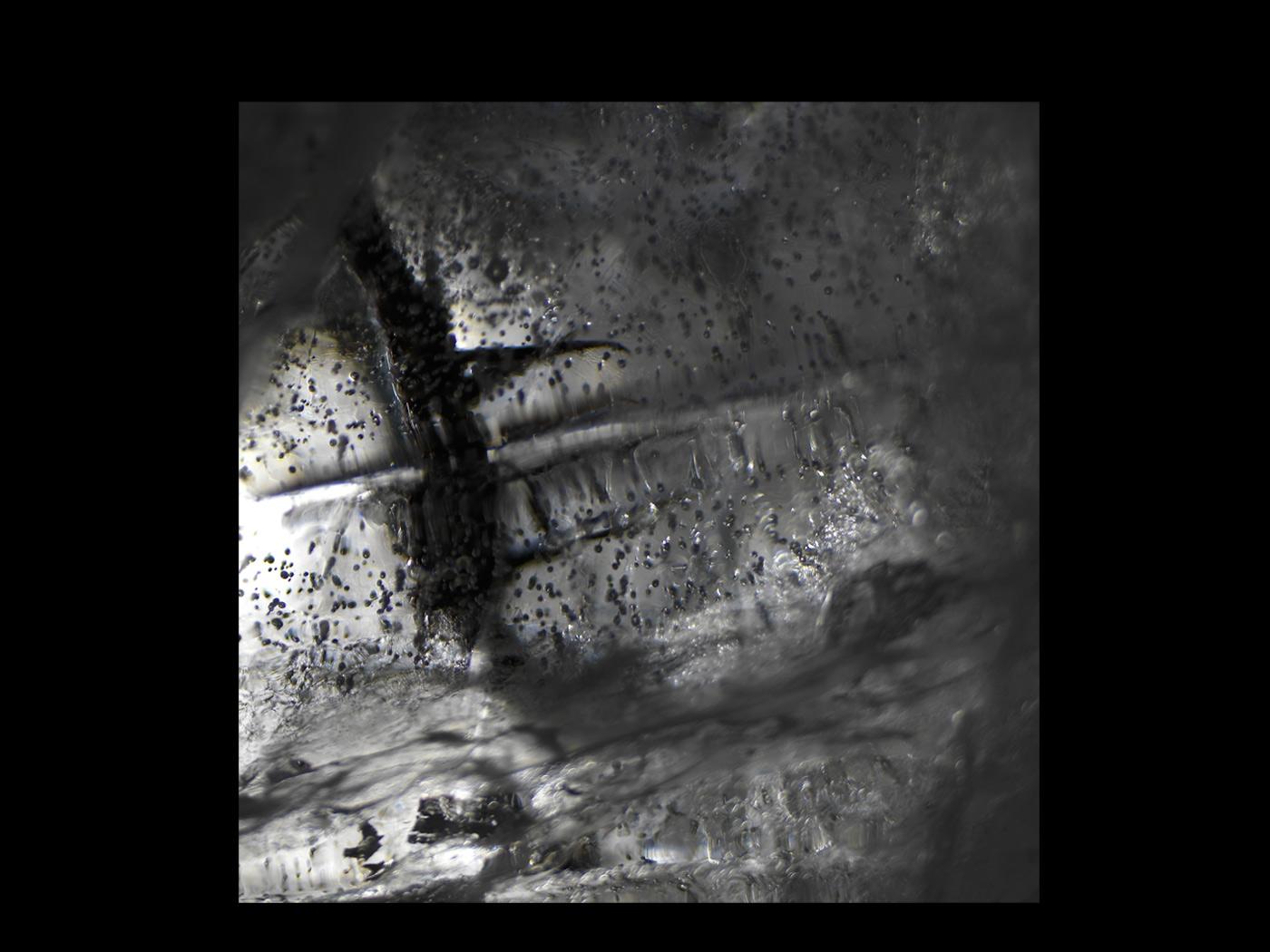 """""""Ossuary""""de-Urals-Still-Life4516860v2_328.jpg"""