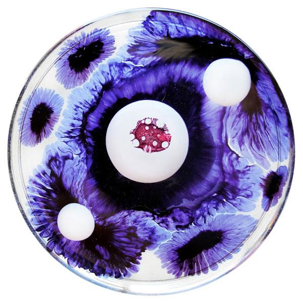 March 29, 2013: The Color Purple, by Klari Reis.