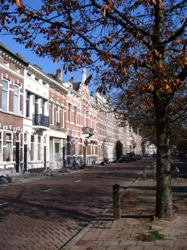 The Nieuwe Bochstraat
