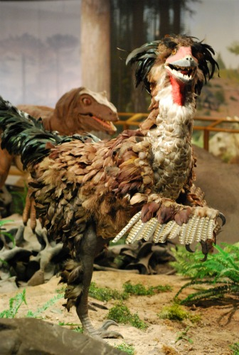 A truly terrible Deinonychus, on display at the Las Vegas Natural History Museum.