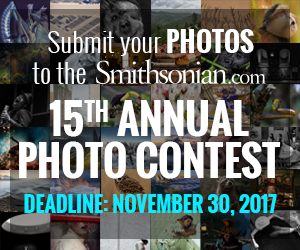 Submit Your Photos to Smithsonian.com's 15th Annual Photo Contest