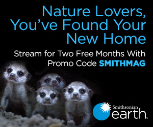 Nature Lovers, You've Found Your New Home