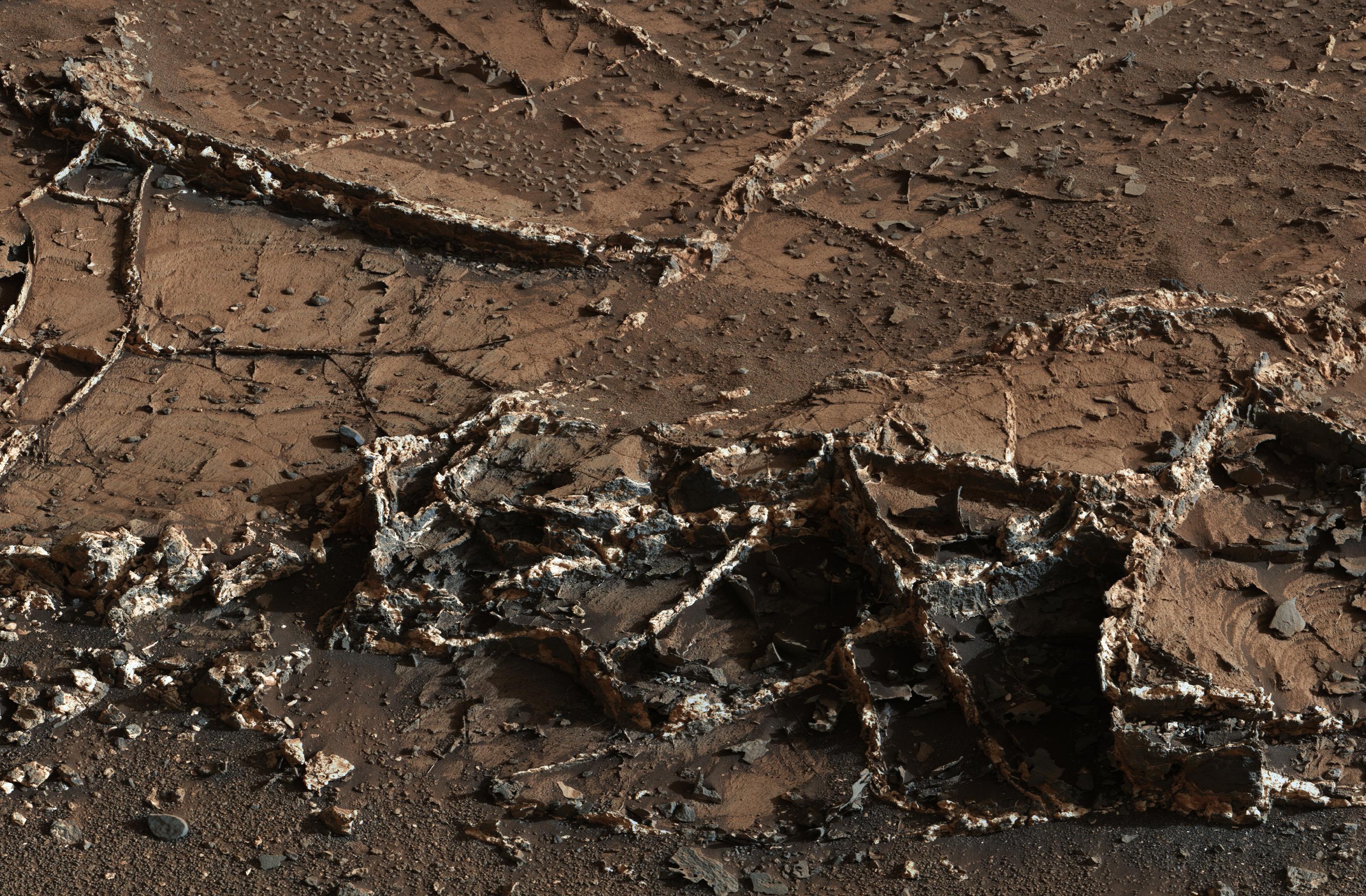 mars-veins-crop.jpg