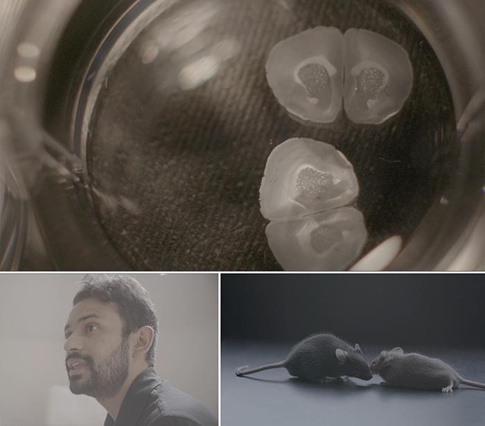 Dhananjay-Bambah-Mukku-and-Vicky-Du-Leading-Strand-film.jpg