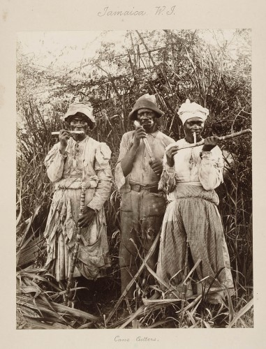 Sugar workers on a Jamaican plantation