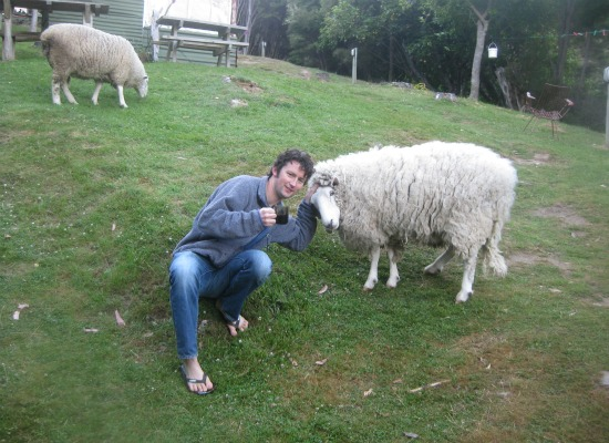 Andrew and two of the Onuku Farm Hostel's permanent residents.