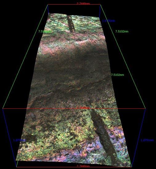Microscope line image