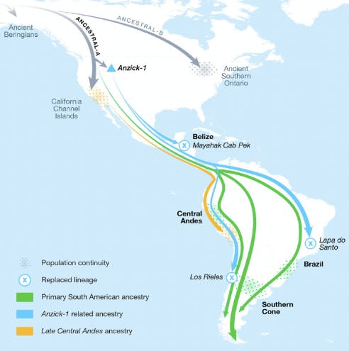 the-majority-of-central-and-south-american-ancestry-arrived-from-at-least-three-different-streams-of.jpeg