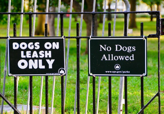 Leash laws