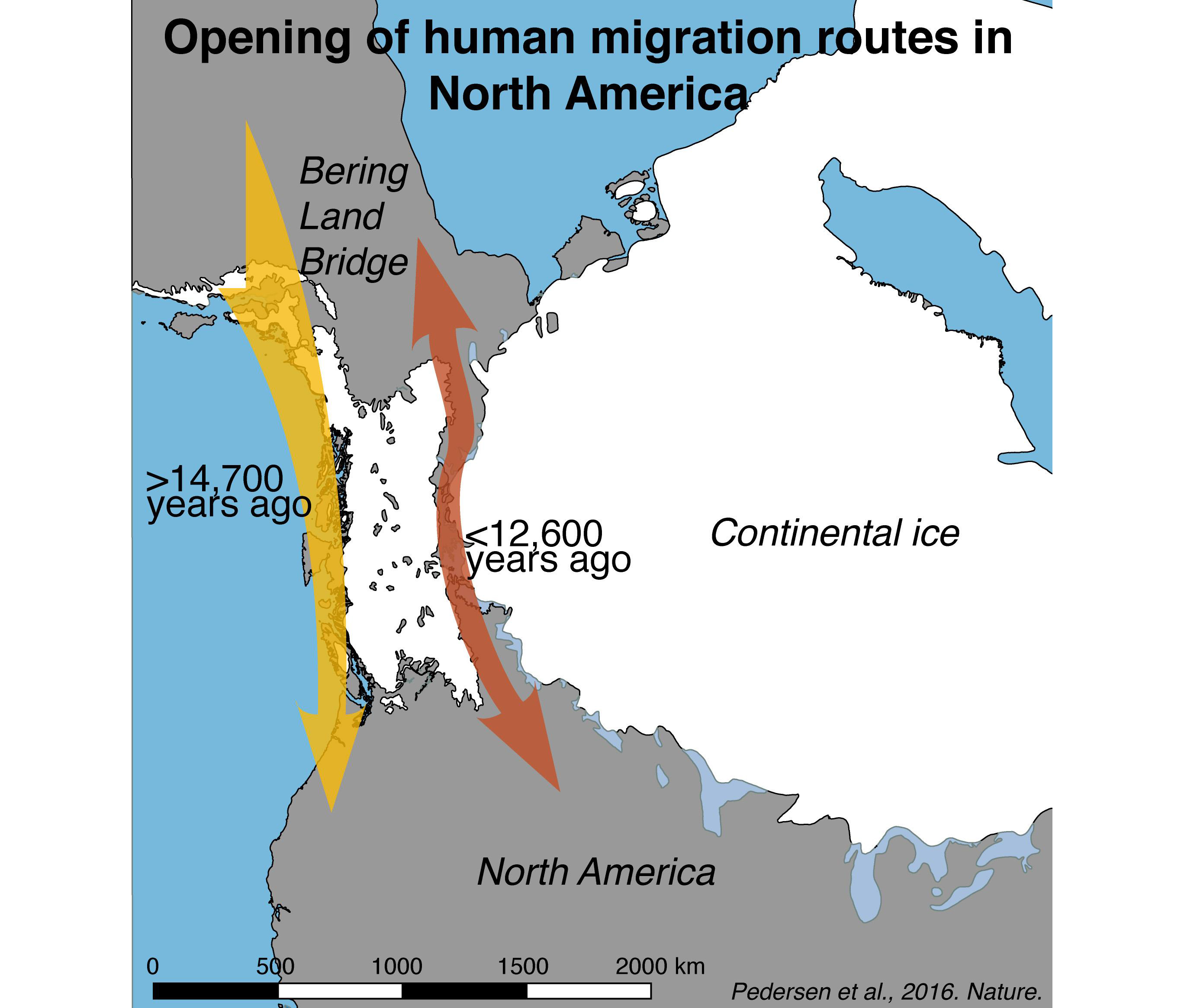first humans entered the americas along the coast not through the ice smart news smithsonian