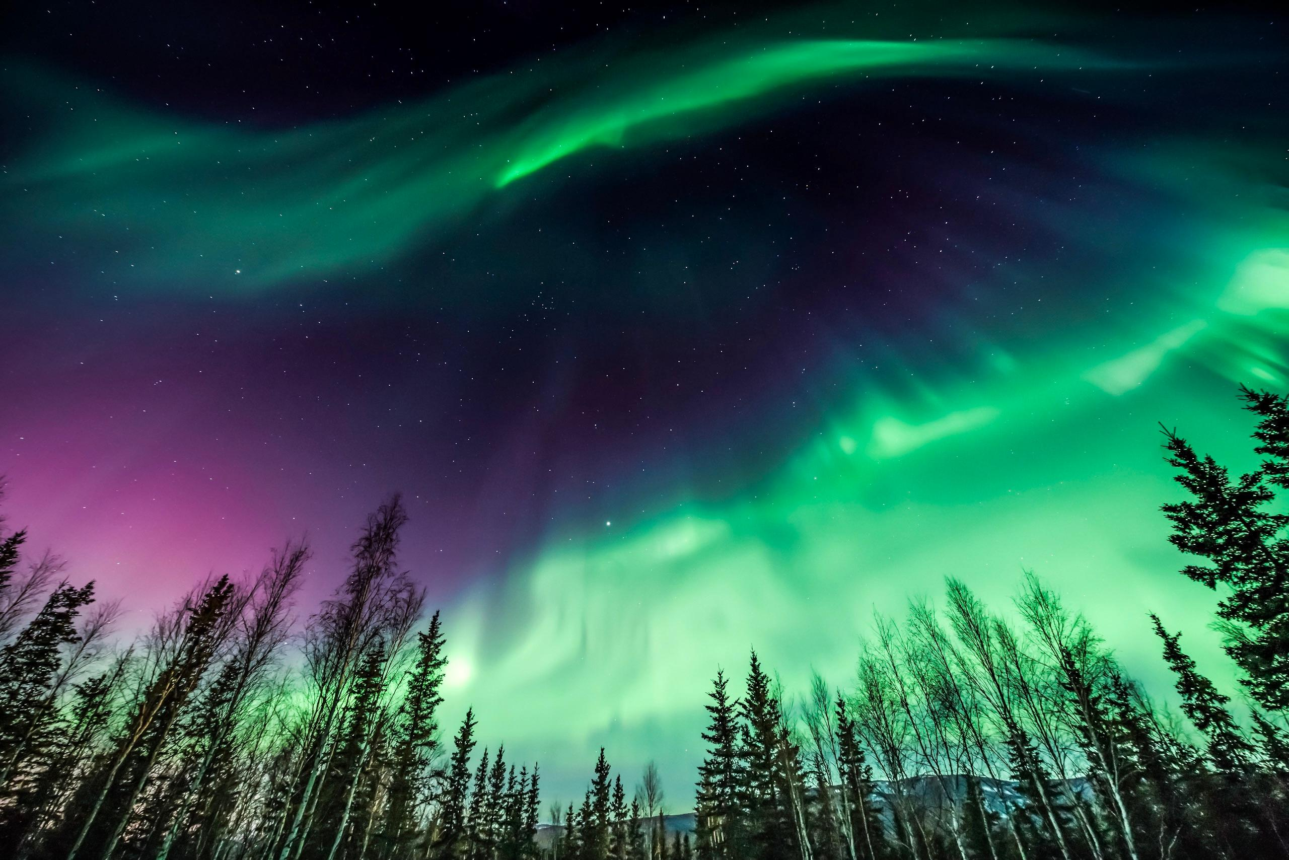 your guide to seeing the northern lights in alaska. Black Bedroom Furniture Sets. Home Design Ideas