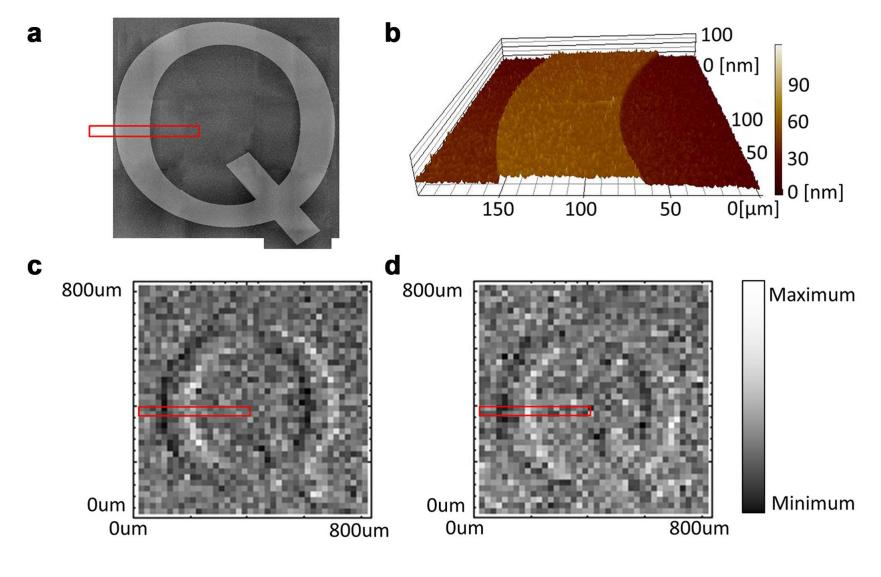 Quantum Microscope