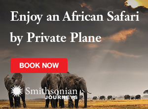 Enjoy an African Safari by Private Plane