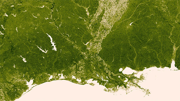 Here you can see the Mississippi River and its tributaries drain into the Gulf of Mexico.