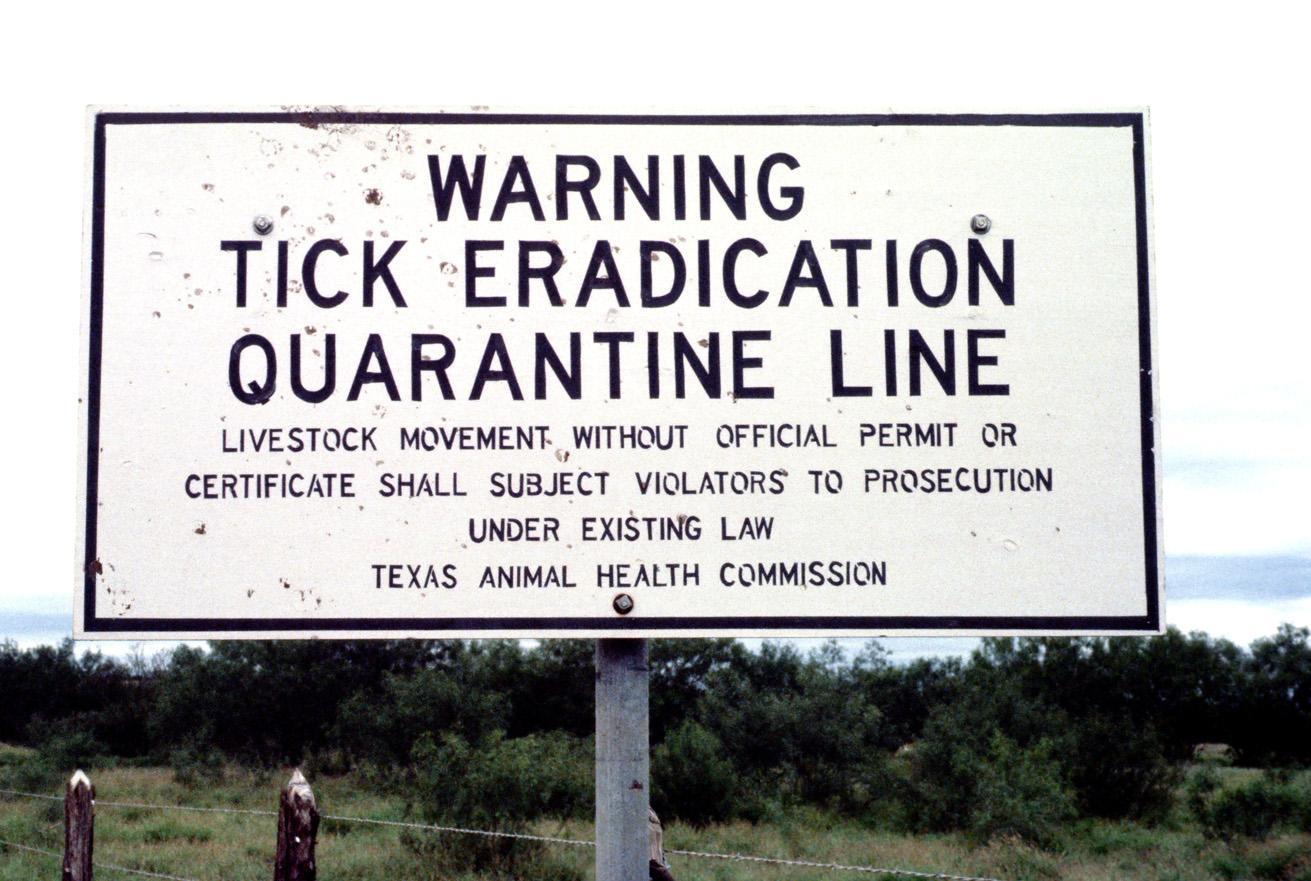 Cattle-Fever-Tick-quarantine-road-sign-25.jpg