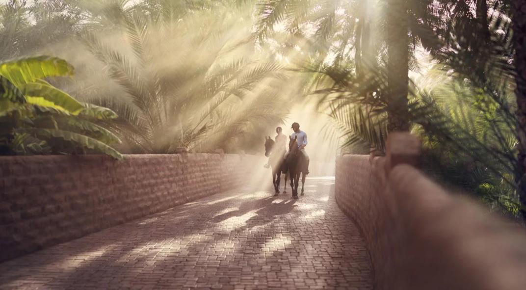 Abu Dhabi Oasis