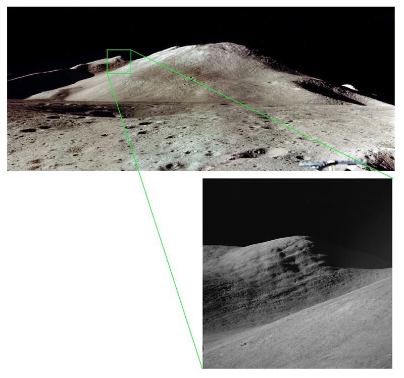Fig 2 Silver Spur.jpg