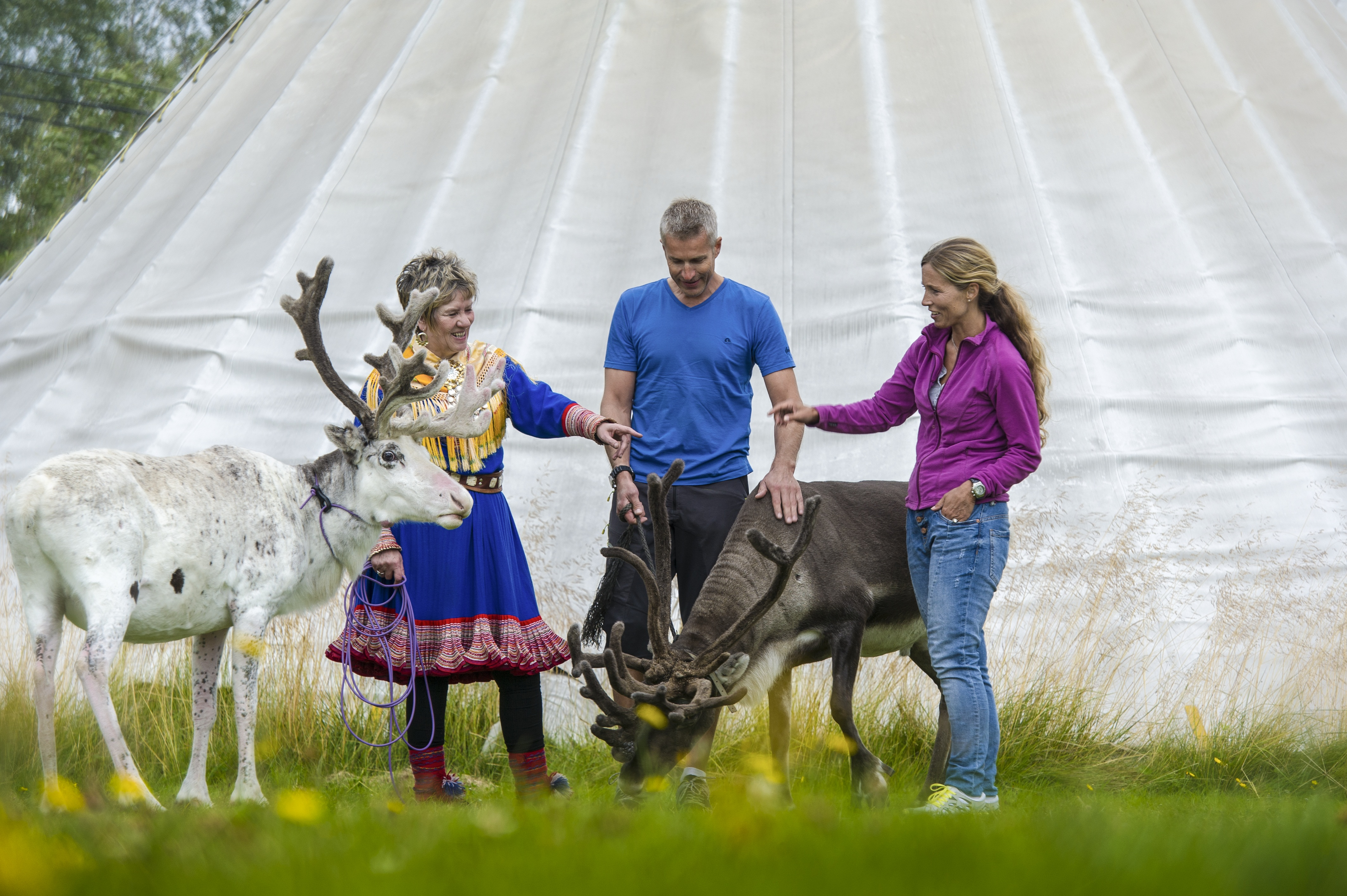 Visiting-the-sami-reindeer-camp-102013-99-0662.JPG