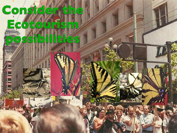 Gay Freedom Day Parade, 1977, by Liam O'Brien