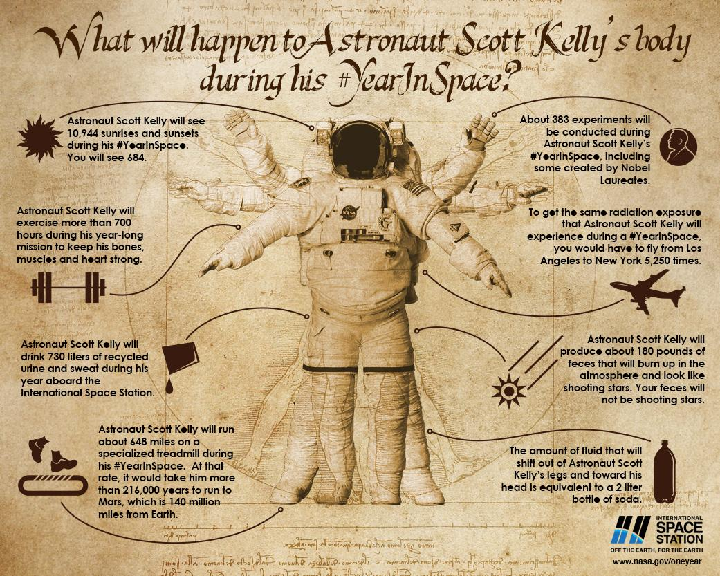 What Happens To The Human Body In Space Science Smithsonian - How much is the human body worth infographic