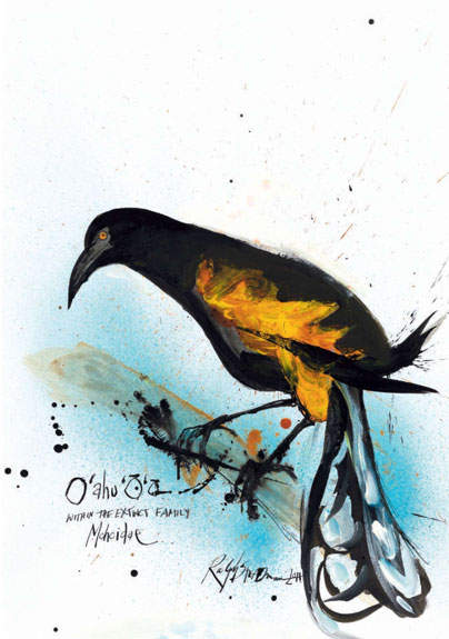 Oahu 'O'o, by Ralph Steadman