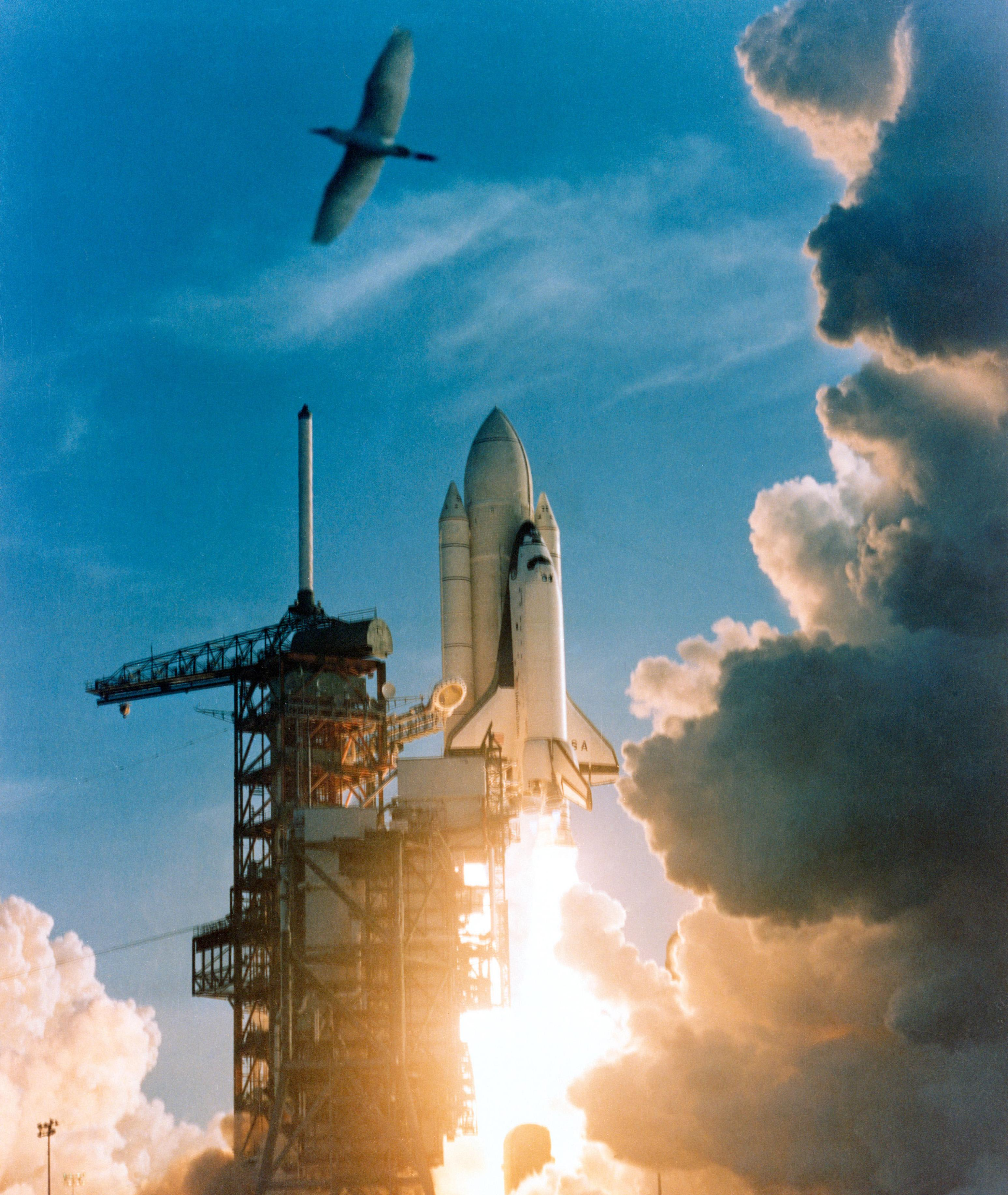 april 12 1981 space shuttle - photo #8