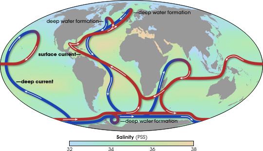 thermohaline_circulation.jpg