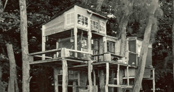 A treehouse at Taylor Camp