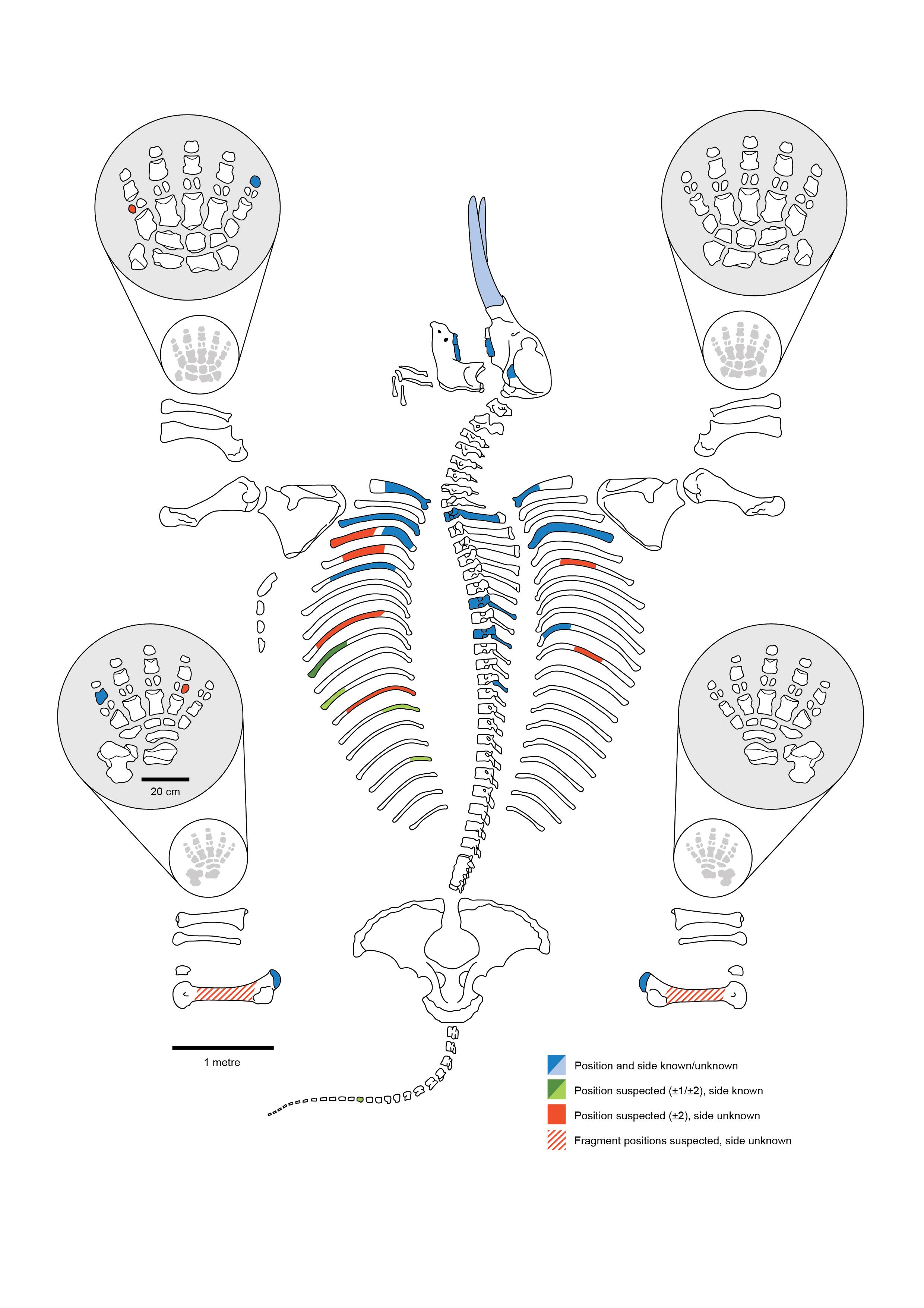 CMS-Figure-1.jpg