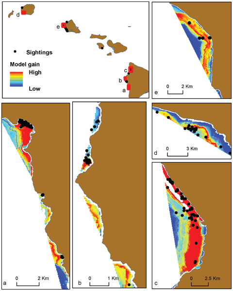 A few of the maps identifying the most suitable spinner dolphin resting areas, indicated in red.