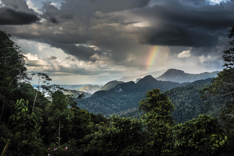 MAR2016_H01_Borneo.jpg