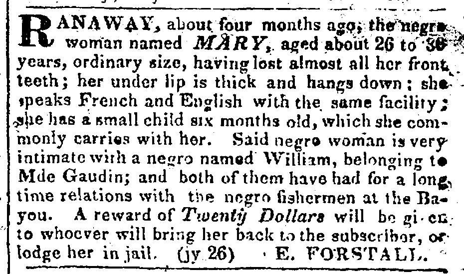 fugitive slave ads 3