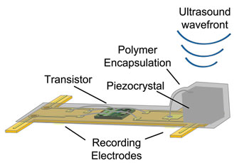 diagram-uc-berkeley-sensor-nerves.jpg