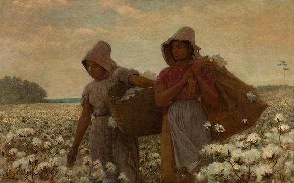 A break in the cotton