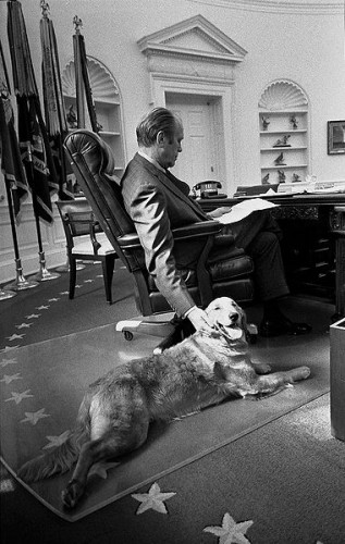 Ford in the Oval Office with his golden retriever