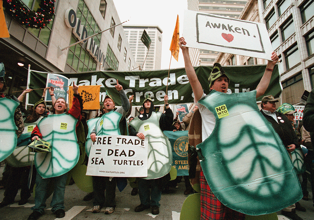 Turtle Suit, Seattle, Washington
