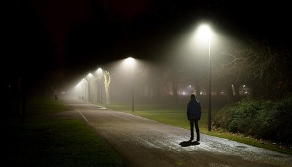 In 2014, Americans Feared Walking Alone at Night. Now They're Worried about Government Corruption