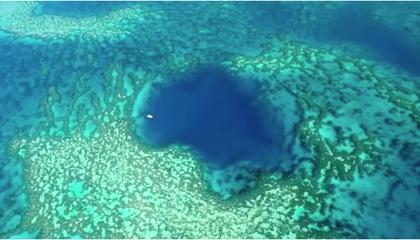 Diver Explores Beautiful Blue Hole Hidden in Plain Sight